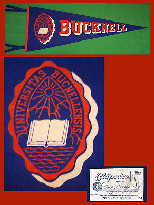 VINTAGE Bucknell University Bisons Football Pennant! WOW