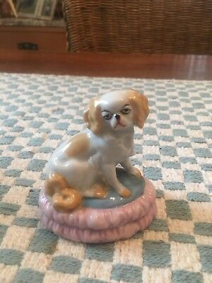 Rare Vintage Porcelain Cavalier King Charles Spaniel Dog Germany 53235