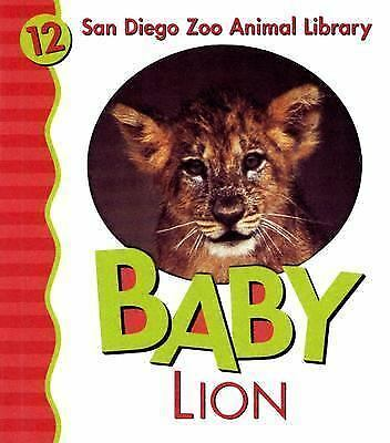 Baby Lion [San Diego Zoo Animal Library] [San Diego Zoo Library]
