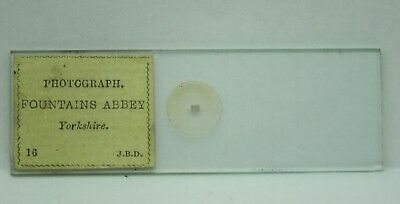 Antique MICROSCOPE Slide JB DANCER Microphotograph FOUNTAINS ABBEY 16 Photograph