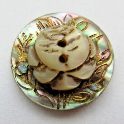 Stunning Antique Victorian Carved Shell BUTTON Reverse Whistle Rose Flower (R)