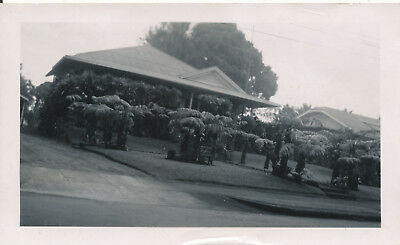 WWII 1944  NASP sailor visits Hilo Hawaii,  beautiful homes in Hilo photo #2