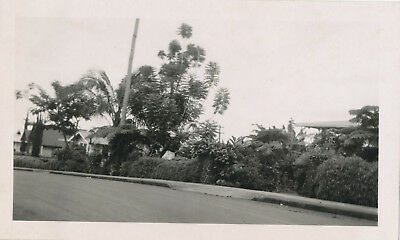 WWII 1944  NASP sailor visits Hilo Hawaii,  beautiful homes in Hilo photo #3