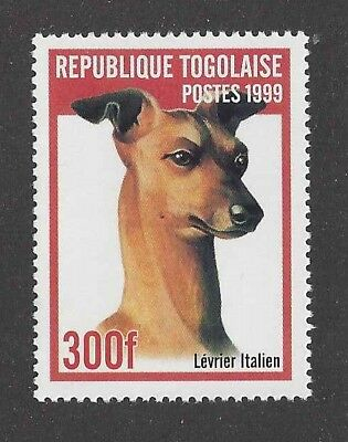 Dog Art Head Study Portrait Postage Stamp ITALIAN GREYHOUND Togo Africa 1999 MNH