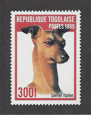 Dog Art Head Study Portrait Postage Stamp ITALIAN GREYHOUND Togo 1999 MNH