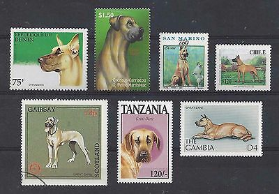 Dog Art Postage Stamp Collection Fawn GREAT DANE 7 Different Head Body MNH