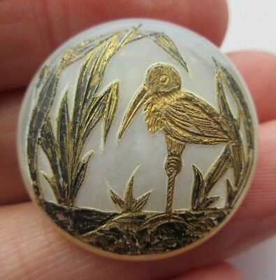 Magnificent Antique~ Vtg Victorian Carved MOP Shell Picture BUTTON Gold Bird (U)