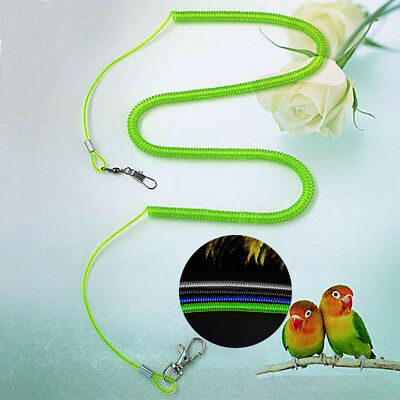 New Parrot Bird Lead Leash Kits Flying Training Rope for Cockatiel 2m 4m 6m
