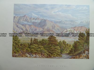 Antique Print 230-407  New Zealand - Clarence River by Barraud c.1877