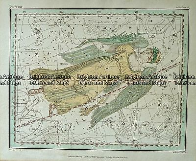 Antique Map 232-578  Celestial - Virgo by Whittakers  c.1822 Celestial