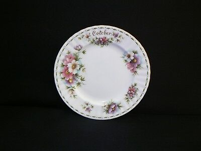 Royal Albert Collector Salad Plate Flowers Of The Month - Cosmos - 0Ctober