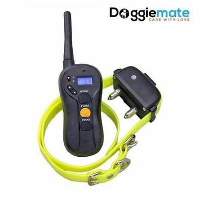 Dog Training collar Rechargeable and Waterproof Remote