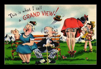 Dr Jim Stamps Us This Is What I Call A Grand View Linen Comic Topical Postcard