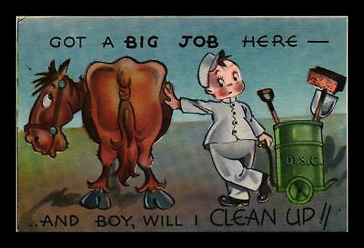 Dr Jim Stamps Us Horse Big Job Clean Up Comic Topical Postcard