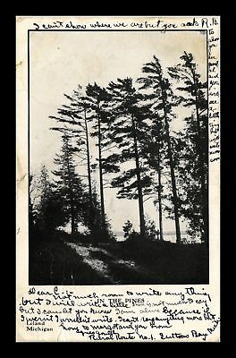 Dr Jim Stamps Us In The Pines Leland Michigan View Postcard
