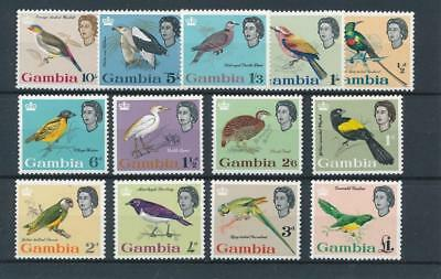 [38257] Gambia Birds Good lot Very Fine MNH stamps
