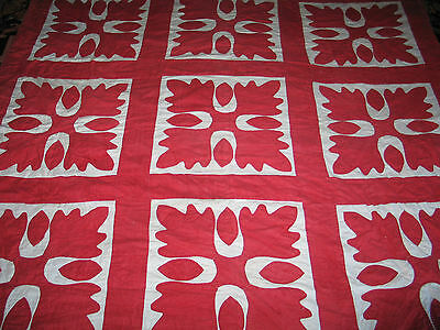 Antique Late 1800s Hand Applique~Quilted Quilt-OAK LEAF~Red~White