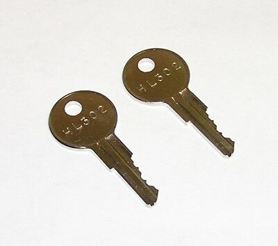 2 - HL302 Keys fits True Refrigeration & Pyramid, Stromberg, Widmer Time Stamps