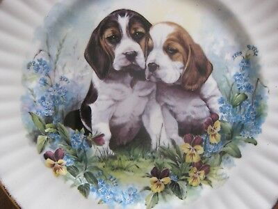 Vintage Puppy Plate by Royal Vale C 87 1 (Second)