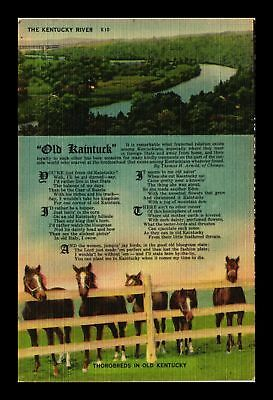 Dr Jim Stamps Us The Kentucky River Thorobred Horses Linen Topical Postcard