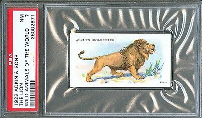 1922 Adkin & Sons The LION Wild Animals of the World Trade Card PSA 7