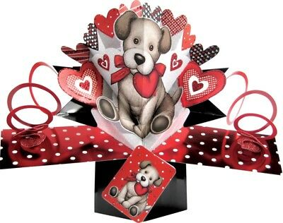 ❤️ VALENTINES DAY CARD Pop Up Unique Cute Puppy Love / Animal Lover ❤️