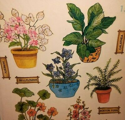 1977 VTG NIP MEYERCORD Water Slide Decals ~ Lovely House Plants ~ Great Colors