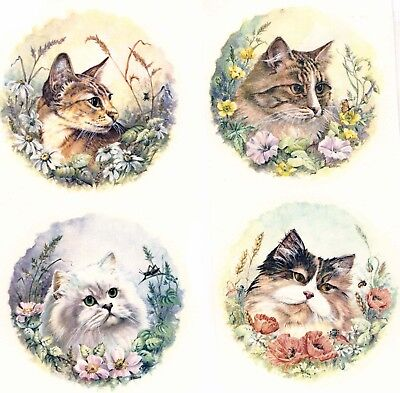 "Cats Flower Garden Set of 4 pcs 3"" Waterslide Ceramic Decals Xx"
