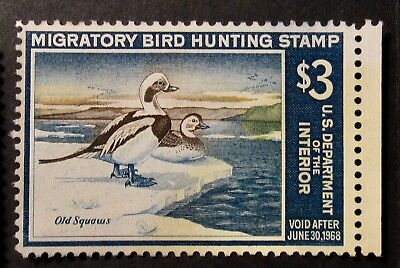 RW34 - 1967 Federal Duck Hunting Stamp - Mint NG
