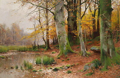 Art Giclee Print Beautiful Forests Scene Oil painting HD Printed on Canvas P597
