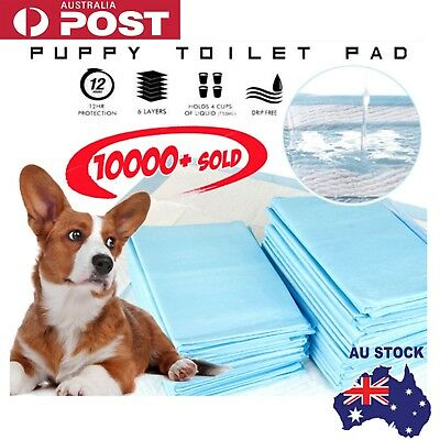 S/M/L Puppy Pet Dog Indoor Cat Toilet Training Pads Absorbent