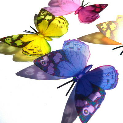 B016 - Acrylic Butterflies Weddings Crafts, Cake Topper, Decorations, Cards