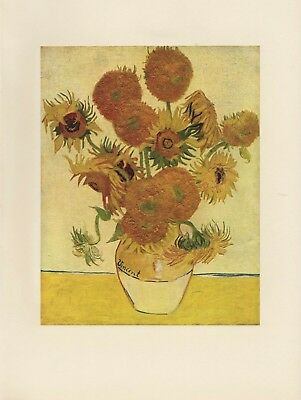 """1952 full Color Art Plate """"SUNFLOWERS""""  FAMOUS by Van Gogh Lithograph"""