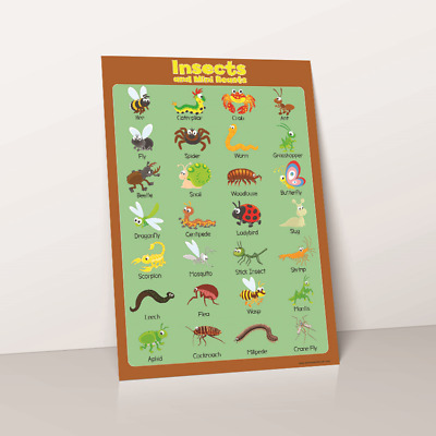 Learn Insects Poster Educational Toddler Childs Print Kids Chart Wallchart