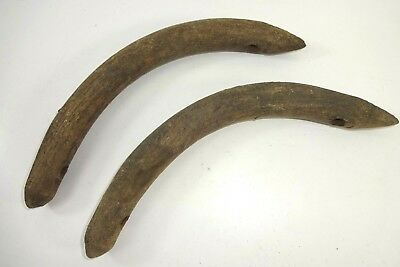 (1) Pair of Antique Wooden Bent Wood Repair Braces from a Press Back Chair Auc 5