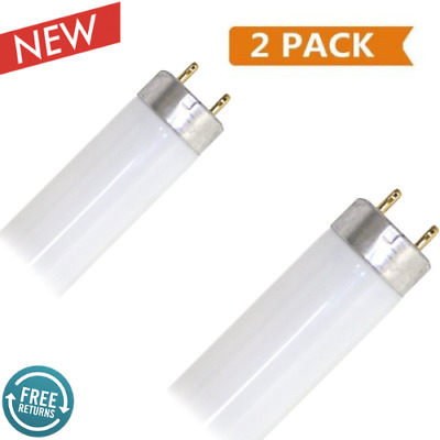"Eiko 15521-1 F15T8/CW Straight T8 Cool Fluorescent Tube Light Bulb, 18"" White"