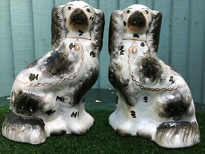 SUPERB PAIR of MID 19thC STAFFORDSHIRE SEATED BLACK &  WHITE SPANIEL DOGS c1860s