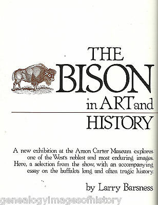 Buffalo History In Art And Text