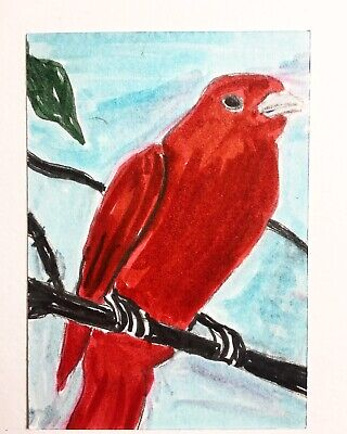 Original ACEO Painting Red Bird Card Miniature Card Art By Carole Collins