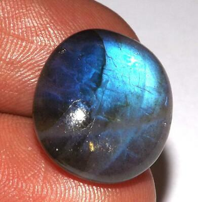 15.70 ct Fire Labradorite Cabochon 19 x 16 mm Natural Earth Mined Gem #zlb84