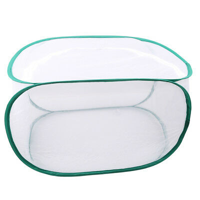 White Portable Collapsible Insect Butterfly Habitat Cage Terrarium Up Open Z