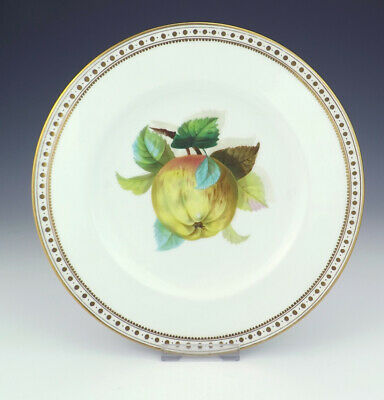Antique English Porcelain - Hand Painted Apple Decorated Plate - Lovely!