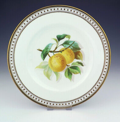 Antique English Porcelain - Hand Painted Plum Decorated Plate - Lovely!