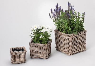 G2190:3 Planters, Flower Made of Rattan, Plant Basket, Flower Planters