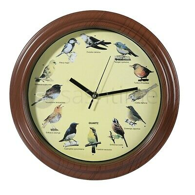 New Novelty Singing Bird Wall Clock With 12 Birds Sounds Kids Children Learning