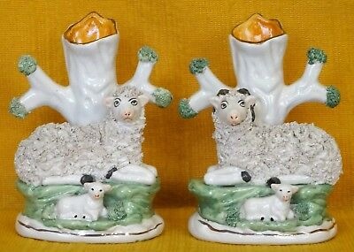 Pair Vintage/Antique Staffordshire Recumbent SHEEP & RAM with Lambs SPILL VASES