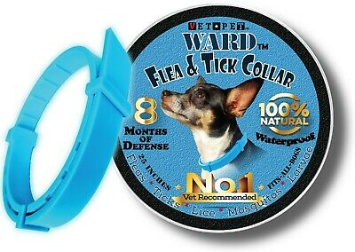 Flea Collar For Dogs 1-Size-Fits-All Natural Oils 8 Month Flea and Tick Control