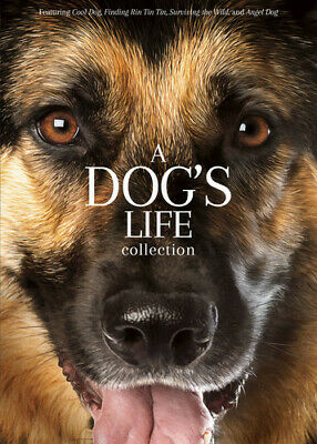 A Dog's Life Collection [New DVD] Widescreen