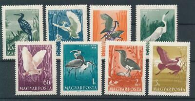 [73467] Hungary 1959 Birds good set Very Fine MNH stamps