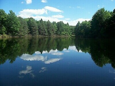 $450,000 / 4br - 3500ft - 60 acres - 10 acre private lake near buffalo, new york